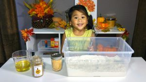 DIY Pumpkin Pie Scented Cloud Dough Materials