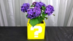 Mario Question Mark Block Flower Pot Tutorial